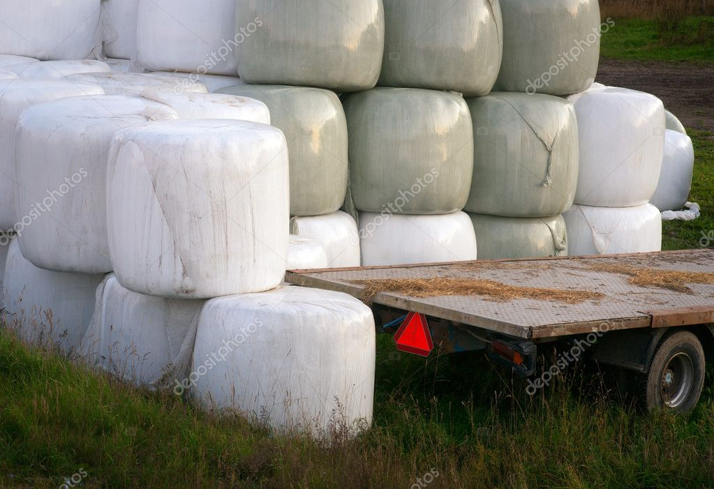 Stack of hay bales wrapped in plastic and an empty trailer  Stock Photo #7186317