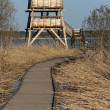 Stock Photo: Bird watching tower