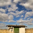 Shack in wheat field - Stock Photo