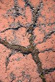 Cracked painted asphalt — Stock Photo