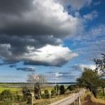 Rural landscape — Stock Photo #7238032
