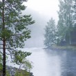Foggy river - Stock Photo