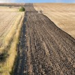 Plowing field — Stock Photo #7239370
