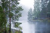 Foggy river — Stock Photo