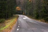 Strada di campagna in autunno — Foto Stock