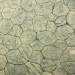 Paving tiles - Foto Stock