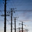 Stock Photo: Electricity poles