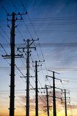 Electricity poles — Stock Photo
