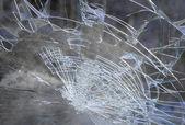 Smashed windshield — Стоковое фото