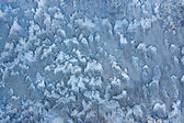 Ledové pozadí — Stock fotografie