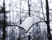 Lump of snow — Stock Photo