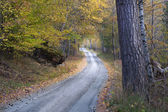 Country road in autumn — Stockfoto