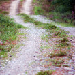Winding dirt road — Stock Photo