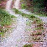Winding dirt road — Stock Photo