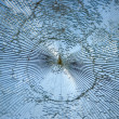 Stock Photo: Broken window