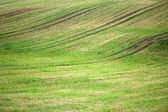 Background of plowed field with grass — Stock Photo