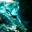 Free diver at an entrance to Cenote — Stock Photo