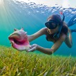 Постер, плакат: Snorkeler with a conch shell