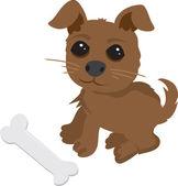 Hund und knochen — Stockvektor
