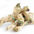 Stock Photo: Roots of horseradish as spicy condiment for meal or salad