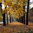 Stock Photo: Autumn in town