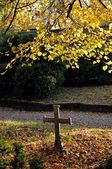 Lonely cross and tomb on cemetery at autumn — Stock Photo