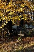 Catholic cross,cemetery and autumn — Stock Photo