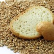 Slices of bread and wheat seeds — Stock Photo