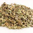 Cardamon seeds - Stock Photo