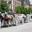 Stock Photo: Traditional cabs with horses in Krakow