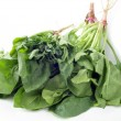 Green leaves of spinach - Stock Photo