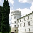 Stock Photo: Krasiczyn castle and ancient gun