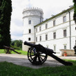 Old lordly castle in Krasiczyn and gun on courtyard — Stock Photo