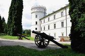 Oude vorstelijke kasteel in krasiczyn en pistool op binnenplaats — Stockfoto