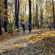 Autumn gold park and couples in love — Stock Photo