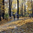 Autumn gold park and couples in love — Zdjęcie stockowe #7554070