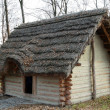 Skansen museum in Trzcinica - early medieval cottage - 图库照片