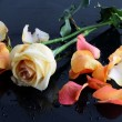 Wet roses on black table — Stock Photo