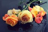 Roses in black table — Stock Photo