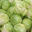 Cabbage heads — Stock Photo #7803715