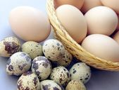Various eggs as wholesome food — Stock Photo