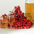 Rowan berries and vodka — Stock Photo