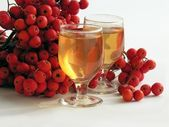 "Red rowan berries and ""rowan-vodka"" — Stockfoto"