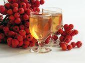 """Red rowan berries and """"rowan-vodka"""" — Stock Photo"""