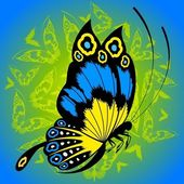 Tropical butterfly — Stock Photo