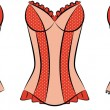 Vintage corsets on ornament background. — Vetor de Stock  #7564371