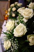 White roses indoor — Stock Photo