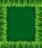 Green grass frame — Stock Photo