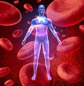 Circulação do sangue humano — Fotografia Stock
