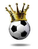 Campeón de fútbol — Foto de Stock